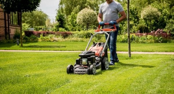 Top 5 Best Cheap Black And Decker Electric Mower Reviews in 2020